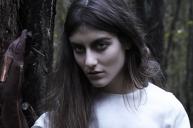 woods-03
